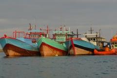 Bali & Borneo 2008